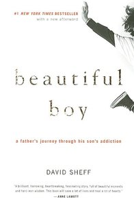BEAUTIFUL BOY: FATHER'S JOURNEY THROUGH HIS SON'S ADDICTION (P)